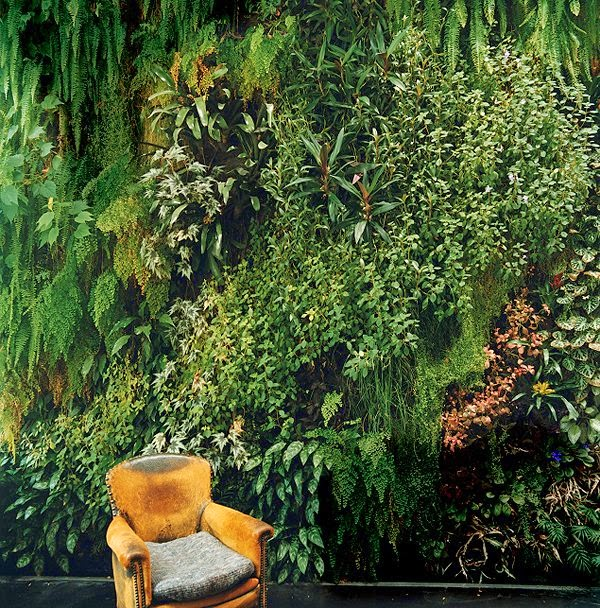 indoor-gardens-paris-france-blanc-patrick-dimanche-house-wall