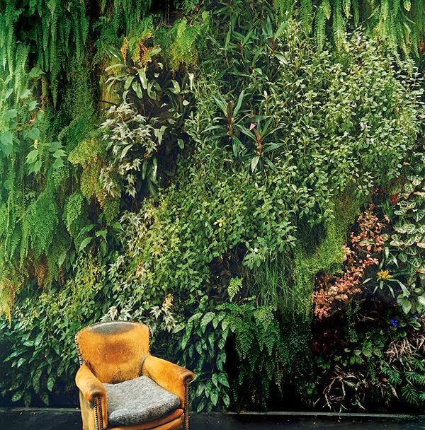 indoor-gardens-paris-france-blanc-patrick-dimanche-house-wall