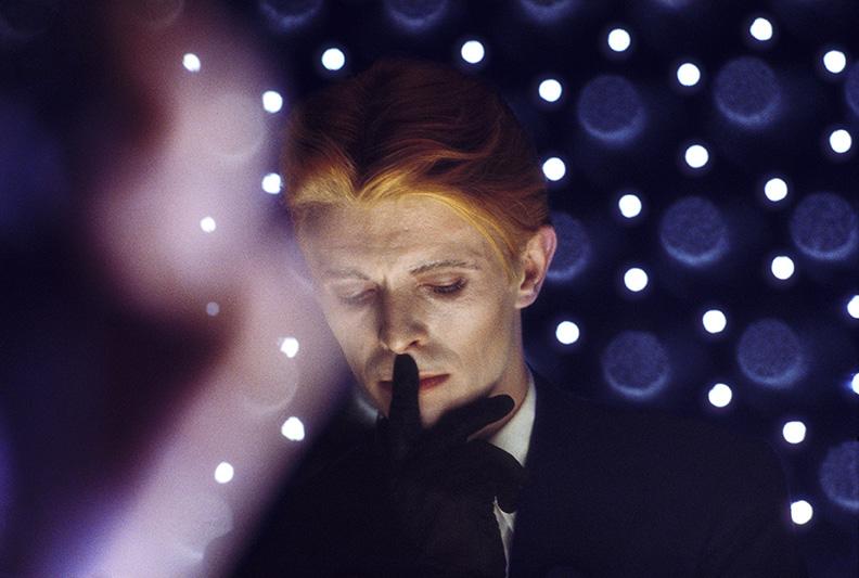 7.Bowie (Blue)