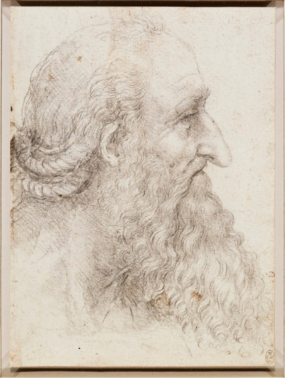 The head of an old bearded man, c.1517-18cropped.jpg
